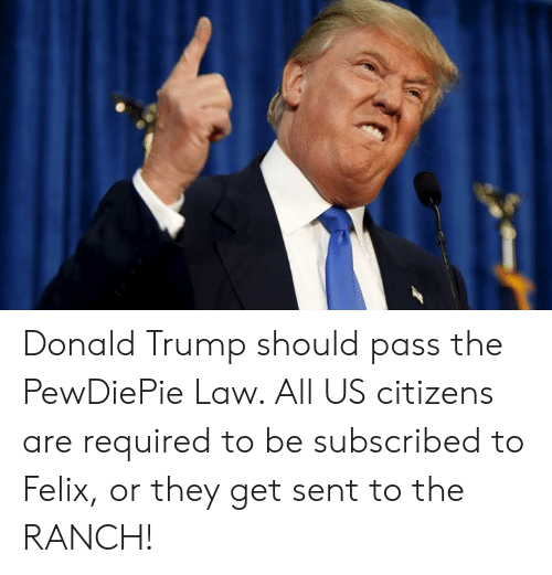 Donald Trump, Trump, and Law: Donald Trump should pass the PewDiePie Law. All US citizens are required to be subscribed to Felix, or they get sent to the RANCH!