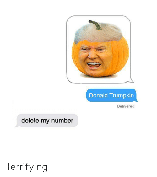 Donald, Delete, and Terrifying: Donald Trumpkin  Delivered  delete my number Terrifying