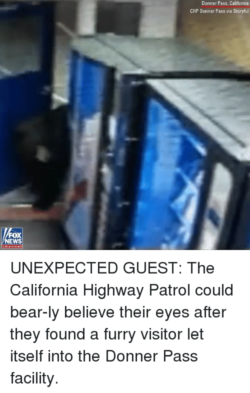 Memes, Bear, and California: Donner Pass, California  CHP Donner Pass via Storyful  FOX  EWS  channol UNEXPECTED GUEST: The California Highway Patrol could bear-ly believe their eyes after they found a furry visitor let itself into the Donner Pass facility.