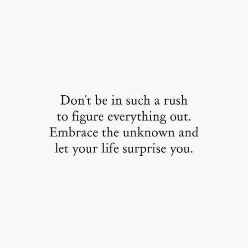 embrace: Don't be in such a rush  figure everything out  Embrace the unknown and  to  let your life surprise you