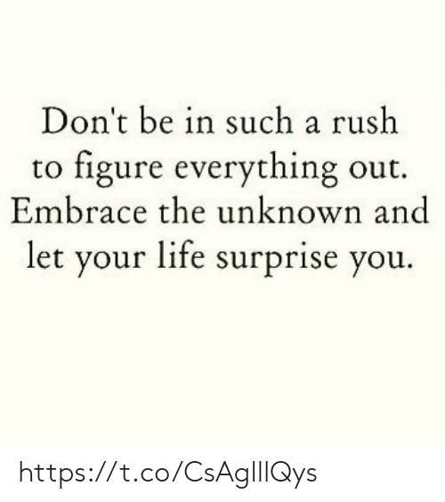 embrace: Don't be in such a rush  to figure everything out.  Embrace the unknown and  let your life surprise you. https://t.co/CsAglllQys