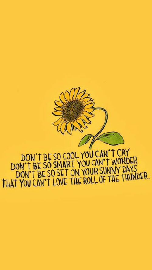 "Love, Cool, and Wonder: DON't BE SO COOL YOU CAN""T CRY  DON'T BE SO SMART YOU CAN'T WONDER  DON'T BE SO SET ON YOUR SUNNY DAYS  THAT Yu CAN'T LOVE TAE ROLL OF THE TAUNDER"