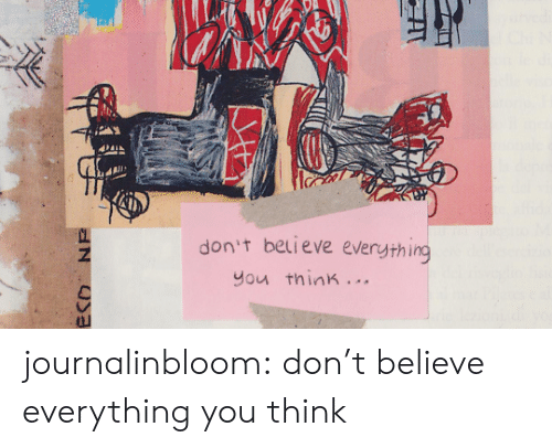 Dont Believe: don't believe everything  you think. ..  ECO NE journalinbloom:  don't believe everything you think