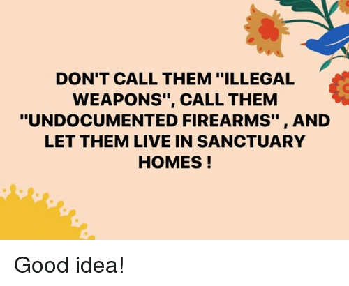 "Memes, Good, and Live: DON'T CALL THEM ""ILLEGAL  WEAPONS"", CALL THEM  ""UNDOCUMENTED FIREARMS"", AND  LET THEM LIVE IN SANCTUARY  HOMES! Good idea!"
