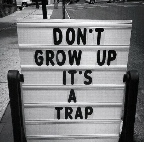 Trap, Grow, and Grow Up: DON'T  GROW UP  IT'S  TRAP