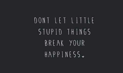 Break, Happiness, and Stupid: DONT LET LITTLE  STUPID THINGS  BREAK YOUR  HAPPINESS