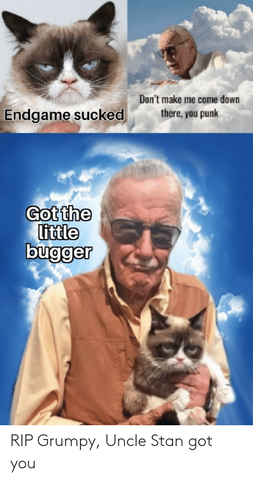 Dont Make Me: Don't make me come down  there, you punk  Endgame sucked  Got the  little RIP Grumpy, Uncle Stan got you