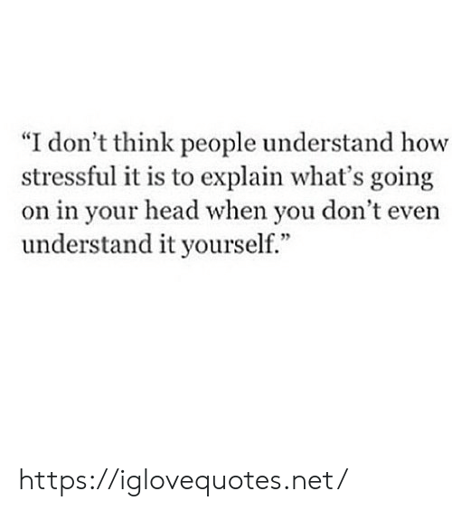 "Head, How, and Net: don't think people understand how  stressful it is to explain what's going  on in your head when you don't even  understand it yourself."" https://iglovequotes.net/"