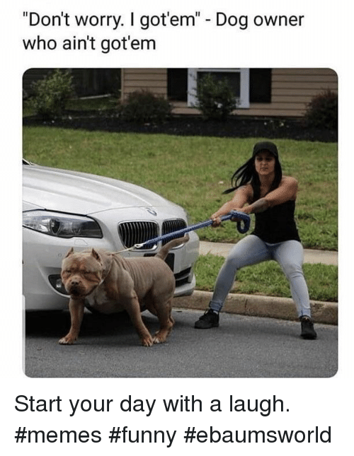 """Ebaumsworld, Funny, and Memes: """"Don't worry. I got'em"""" - Dog owner  who ain't got'em Start your day with a laugh. #memes #funny #ebaumsworld"""