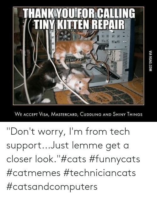 "support: ""Don't worry, I'm from tech support...Just lemme get a closer look.""#cats #funnycats #catmemes #techniciancats #catsandcomputers"