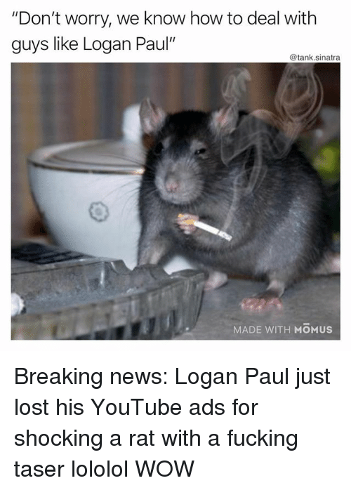 "Fucking, Funny, and News: ""Don't worry, we know how to deal with  guys like Logan Paul'  @tank.sinatra  MADE WITH MOMUS Breaking news: Logan Paul just lost his YouTube ads for shocking a rat with a fucking taser lololol WOW"