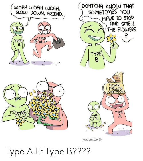 Know That: DONTCHA  WOAH WOAH WOAH,  SLOW DOWN, FRIEND.  KNOW THAT  SOMETIMES YOU  HAVE TO STOP  AND SMELL  (THE FLOWERS  TYPE  TYPE  TYPE  B  FLOWER  SMELLING  CHAMPION  TYPE  A  TYPE  OWLTURD.COM Type A Er Type B????