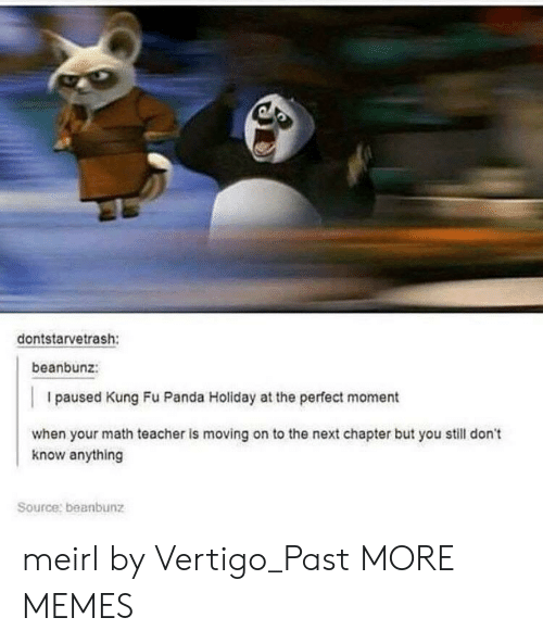 Dank, Memes, and Target: dontstarvetrash:  beanbunz:  I paused Kung Fu Panda Holiday at the perfect moment  when your math teacher is moving on to the next chapter but you still don't  know anything  Source: beanbunz meirl by Vertigo_Past MORE MEMES