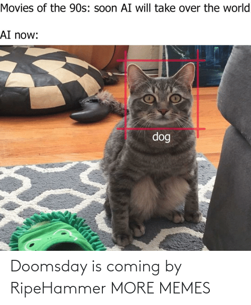 Hilarious: Doomsday is coming by RipeHammer MORE MEMES