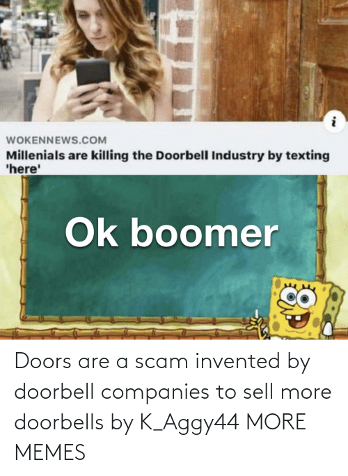 companies: Doors are a scam invented by doorbell companies to sell more doorbells by K_Aggy44 MORE MEMES