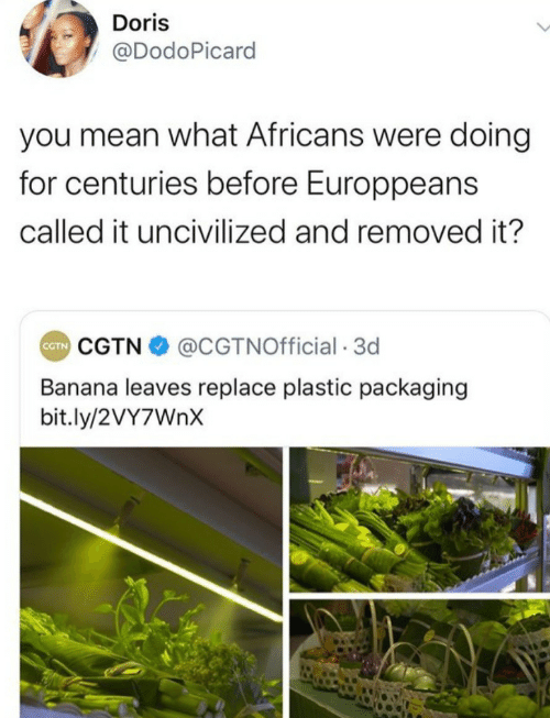 leaves: Doris  @DodoPicard  you mean what Africans were doing  for centuries before Europpeans  called it uncivilized and removed it?  CGTN O @CGTNOfficial · 3d  CTN  Banana leaves replace plastic packaging  bit.ly/2VY7WNX
