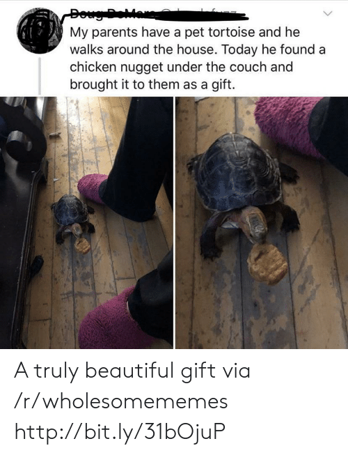 tortoise: Doug Dear  My parents have a pet tortoise and he  walks around the house. Today he found a  chicken nugget under the couch and  brought it to them as a gift. A truly beautiful gift via /r/wholesomememes http://bit.ly/31bOjuP