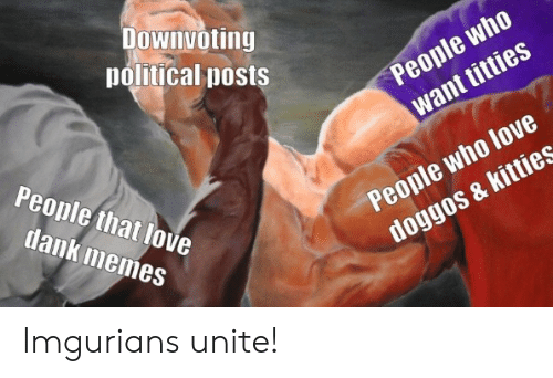 Dank, Kitties, and Love: Downvoting  political posts  People who  want titties  People that love  People who love  doggos & kitties  dank memes Imgurians unite!