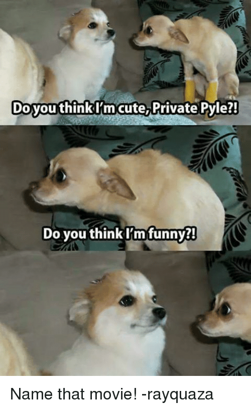 Funny Namees: DoyouthinkI'm cute, Private Pyle?!  Do you think I'm funny Name that movie! -rayquaza