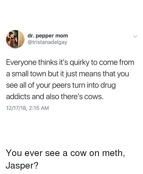 dr pepper: dr. pepper mom  @tristanadelgay  Everyone thinks it's quirky to come from  a small town but it just means that you  see all of your peers turn into drug  addicts and also there's cows.  12/17/18, 2:15 AM You ever see a cow on meth, Jasper?