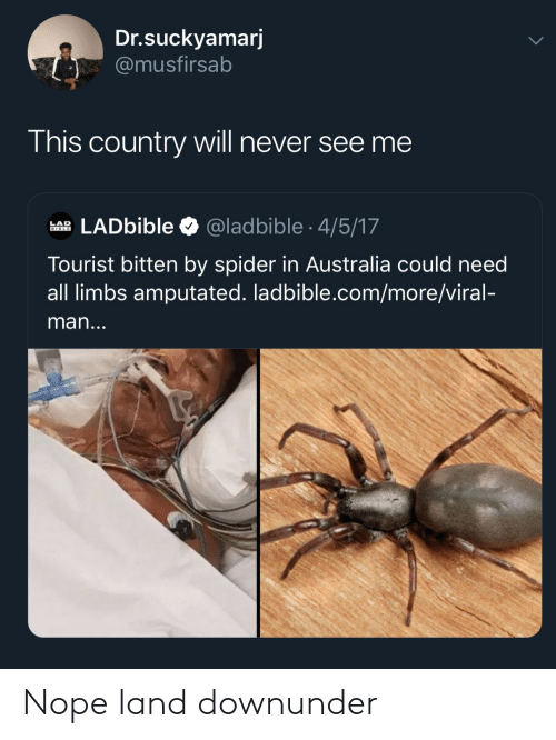 Spider, Australia, and Bible: Dr.suckyamarj  @musfirsab  This country will never see me  LADbible  @ladbible 4/5/17  LAD  BIBLE  Tourist bitten by spider in Australia could need  all limbs amputated. ladbible.com/more/viral-  man... Nope land downunder