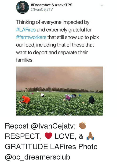 Food, Love, and Memes:  #DreamAct & #saveTPS  @lvanCejaTV  Thinking of everyone impacted by  #LAFires and extremely grateful for  #farmworkers that still show up to pick  our food, including that of those that  want to deport and separate their  families. Repost @IvanCejatv: 👏🏾 RESPECT, ❤️ LOVE, & 🙏🏾 GRATITUDE LAFires Photo @oc_dreamersclub