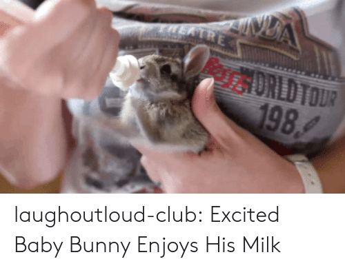 Club, Tumblr, and Blog: DREDTOUR  98 laughoutloud-club:  Excited Baby Bunny Enjoys His Milk