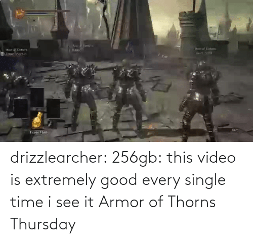 Extremely: drizzlearcher:  256gb: this video is extremely good every single time i see it   Armor of Thorns Thursday