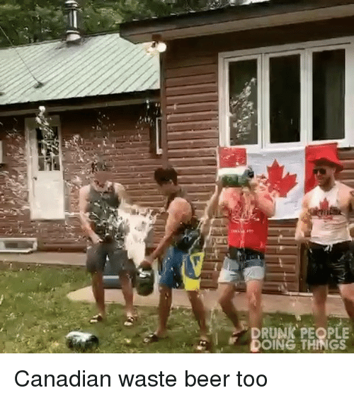 Beer, Drunk, and Memes: DRUNK PEOPLE  DOING THINGS Canadian waste beer too