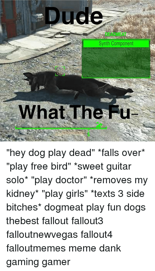 """Fallouts: Dude  DEADMEAT  Synth Component  What The Fu """"hey dog play dead"""" *falls over* """"play free bird"""" *sweet guitar solo* """"play doctor"""" *removes my kidney* """"play girls"""" *texts 3 side bitches* dogmeat play fun dogs thebest fallout fallout3 falloutnewvegas fallout4 falloutmemes meme dank gaming gamer"""