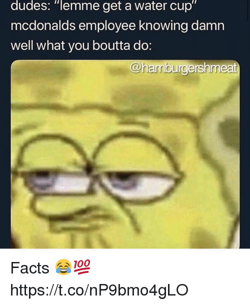 """Facts, McDonalds, and Water: dudes: """"lemme get a water cup""""  mcdonalds employee knowing damn  well what you boutta do:  @hamburdershmeat Facts 😂💯 https://t.co/nP9bmo4gLO"""