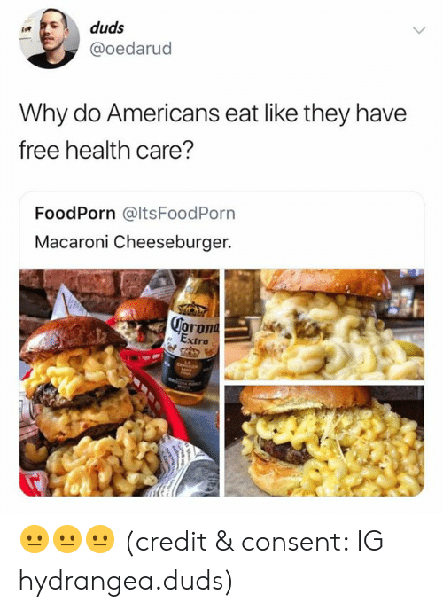 Free, Health, and Why: duds  @oedarud  Why do Americans eat like they have  free health care?  FoodPorn @ltsFoodPorn  Macaroni Cheeseburger.  oron  ra 😐😐😐 (credit & consent: IG hydrangea.duds)