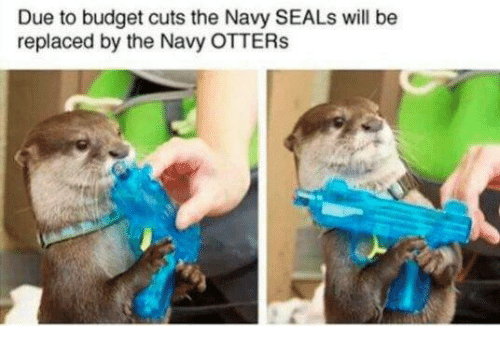 Budget, Navy, and Navy Seals: Due to budget cuts the Navy SEALs will be  replaced by the Navy OTTER:s