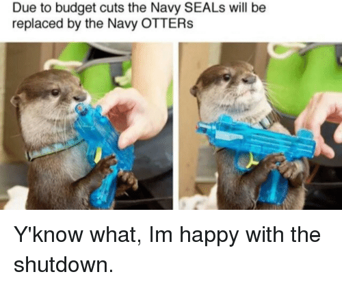 Otters, Budget, and Happy: Due to budget cuts the Navy SEALs will be  replaced by the Navy OTTERs Y'know what, Im happy with the shutdown.