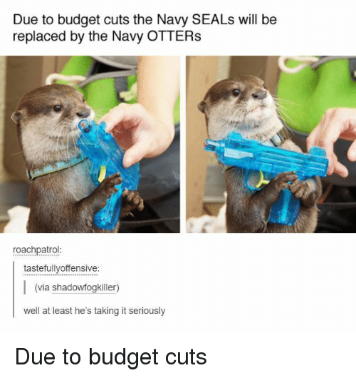 Otters: Due to budget cuts the Navy SEALs will be  replaced by the Navy OTTERS  roachpatrol  tastefullyoffensive:  (via shadowfogkiller)  well at least he's taking it seriously Due to budget cuts
