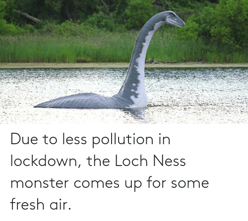 monster: Due to less pollution in lockdown, the Loch Ness monster comes up for some fresh air.