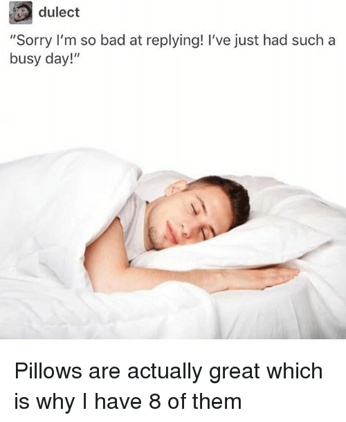 """Busy Day: dulect  """"Sorry I'm so bad at replying! I've just had such a  busy day!"""" Pillows are actually great which is why I have 8 of them"""
