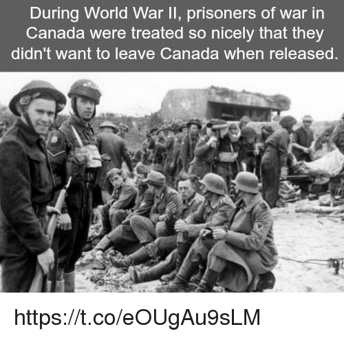 prisoner of war: During World War II, prisoners of war in  Canada were treated so nicely that they  didn't want to leave Canada when released https://t.co/eOUgAu9sLM