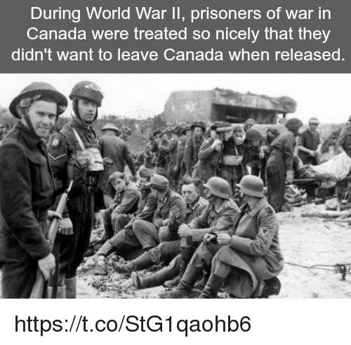 prisoner of war: During World War II, prisoners of war in  Canada were treated so nicely that they  didn't want to leave Canada when released https://t.co/StG1qaohb6