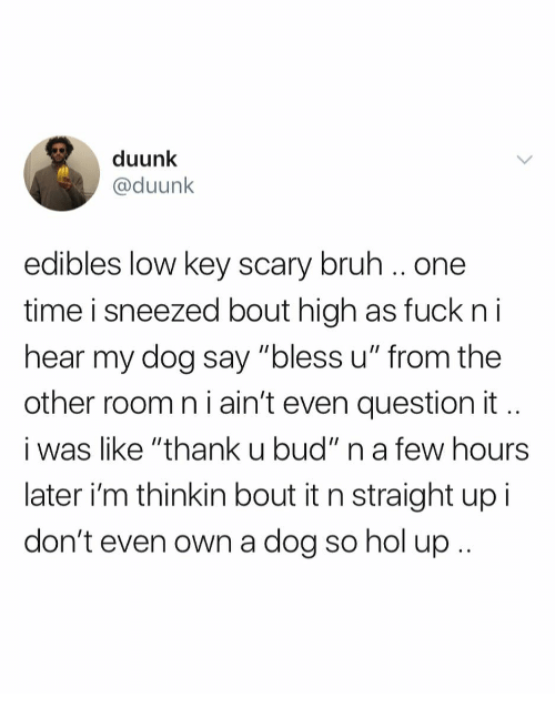 "Bruh, Low Key, and Fuck: duunk  @duunk  edibles low key scary bruh.. one  time i sneezed bout high as fuck n i  hear my dog say ""bless u"" from the  other room n i ain't even question it  i was like ""thank u bud"" n a few hours  later i'm thinkin bout it n straight up i  don't even own a dog so hol up"