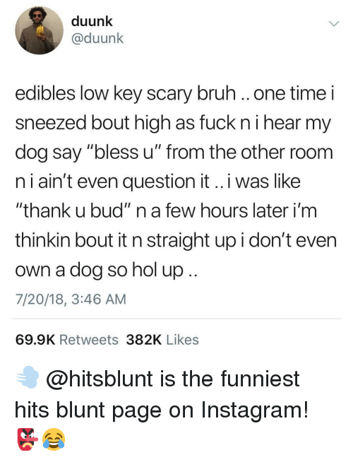 "Bruh, Instagram, and Low Key: duunk  @duunk  edibles low key scary bruh ..one time i  sneezed bout high as fuck ni hear my  dog say ""bless u"" from the other room  n i ain't even question it..i was like  ""thank u bud"" n a few hours later i'm  thinkin bout it n straight up i don't even  own a dog so nol up  7/20/18, 3:46 AM  69.9K Retweets 382K Likes 💨 @hitsblunt is the funniest hits blunt page on Instagram! 👺😂"