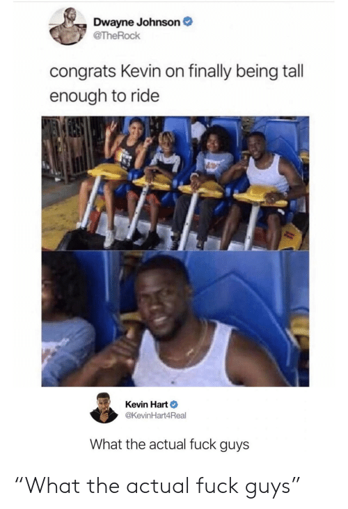 "Kevin Hart: Dwayne Johnson  @TheRock  congrats Kevin on finally being tall  enough to ride  Kevin Hart  @KevinHart4Real  What the actual fuck guys ""What the actual fuck guys"""