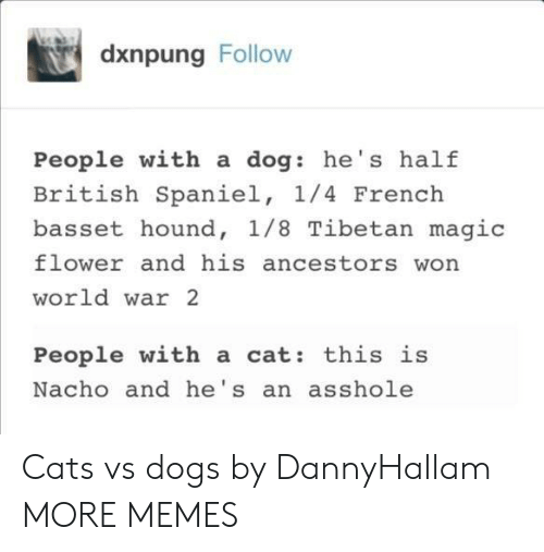 Cats, Dank, and Dogs: dxnpung Follow  People with a dog: he's half  British Spaniel, 1/4 French  basset hound, 1/8 Tibetan magic  flower and his ancestors won  world war 2  People with a cat: this is  Nacho and he's an asshole Cats vs dogs by DannyHallam MORE MEMES