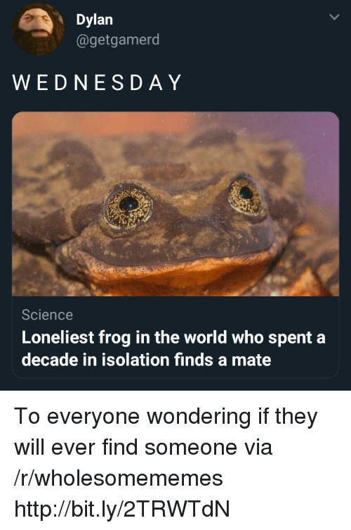 Http, Science, and World: Dylan  @getgamerod  WEDNESD AY  Science  Loneliest frog in the world who spent a  decade in isolation finds a mate To everyone wondering if they will ever find someone via /r/wholesomememes http://bit.ly/2TRWTdN