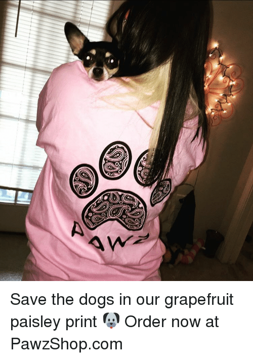 grapefruiting: e-M D Save the dogs in our grapefruit paisley print 🐶 Order now at PawzShop.com
