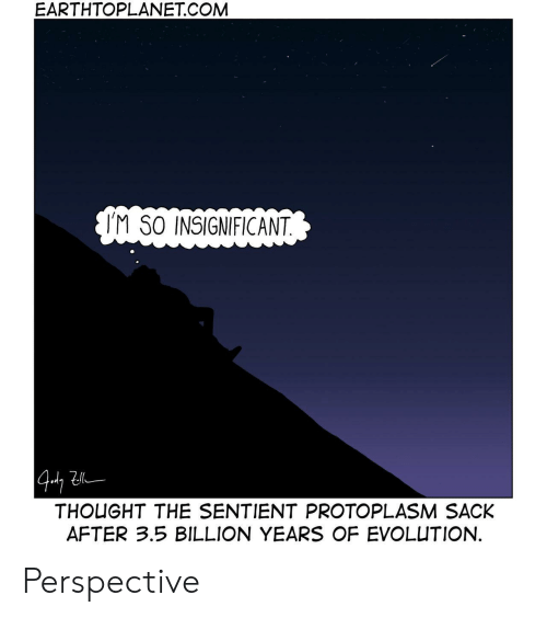 Evolution, Thought, and Com: EART  HTOPLANET.COM  IM SO INSIGNIFICANT  THOUGHT THE SENTIENT PROTOPLASM SACK  AFTER 3.5 BILLION YEARS OF EVOLUTION. Perspective