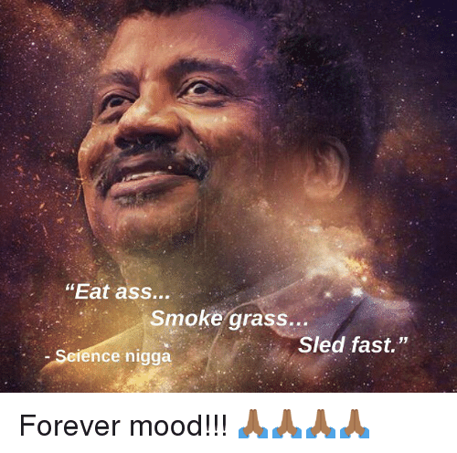 """Ass, Memes, and Mood: """"Eat ass...  Smoke grass...  Sled fast.""""  Science nigga Forever mood!!! 🙏🏾🙏🏾🙏🏾🙏🏾"""