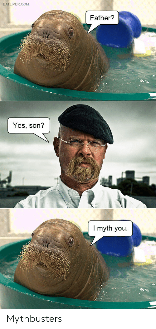 MythBusters, Yes, and Com: EATLIVER.COM  Father?  Yes, son?  I myth you Mythbusters