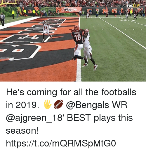 Memes, Bengals, and Best: EB  &Play60  OXNFL  GREEN  18 He's coming for all the footballs in 2019. 🖐🏈  @Bengals WR @ajgreen_18' BEST plays this season! https://t.co/mQRMSpMtG0