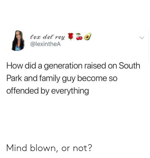 Family, Family Guy, and South Park: ec det r  @lexintheA  reyo  How did a generation raised on South  Park and family guy become so  offended by everything Mind blown, or not?